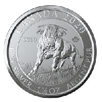 2020 Silver Bull Coin - GSI Exchange