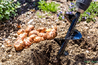 The kit includes two garden auger drill bits that turn any hand power drill into a powered soil digger that makes planting a breeze.